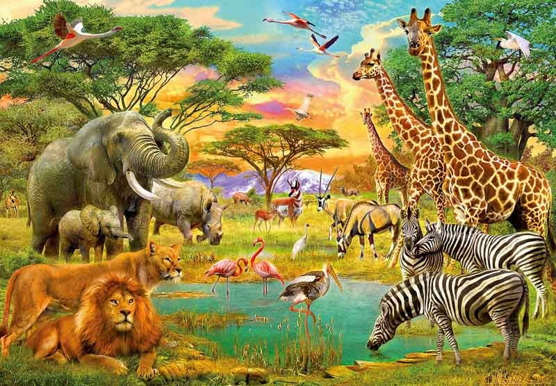Fototapet African-Animals