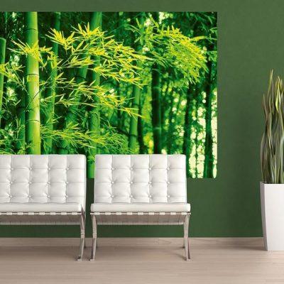 fototapet Bamboo-in-Spring-1