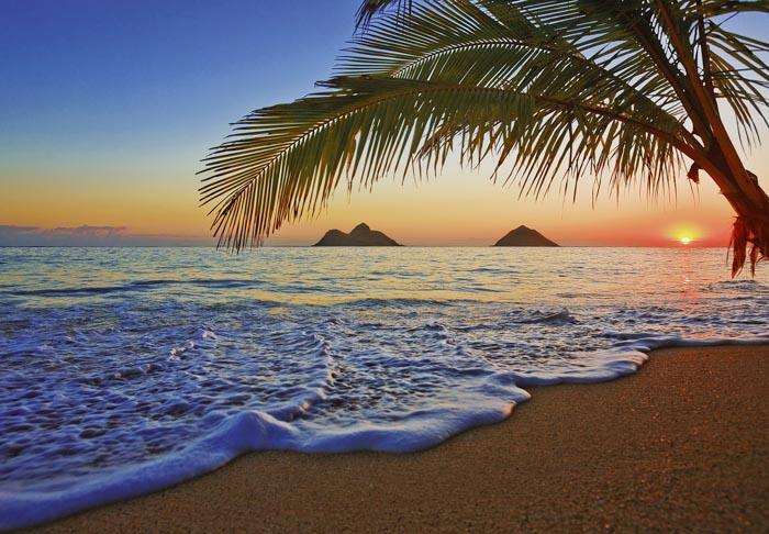 fototapet pacific sunrise