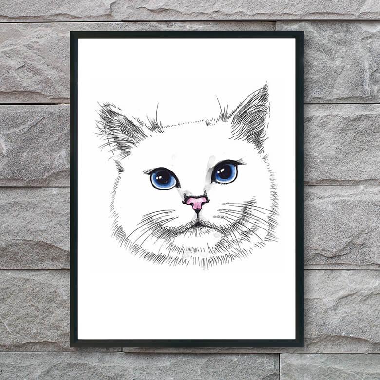 plakat-med-kat-blå-øjne