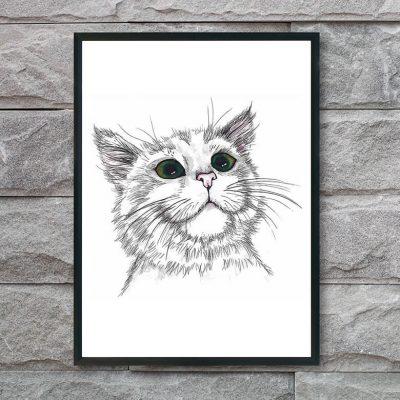 plakat-med-kat-og-grønne-øjne