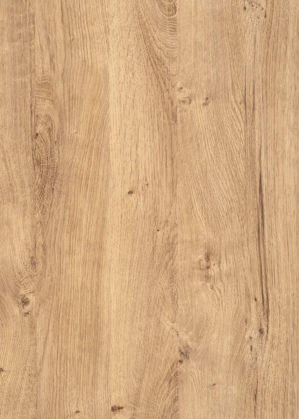 Ribbeck Oak folie
