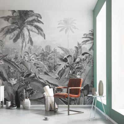 forotapet Amazonia og sort og hvid, palmer og store blade
