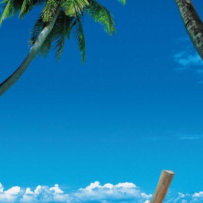 Fototapet med palmer og båd liggende på stranden med flot blå himmel