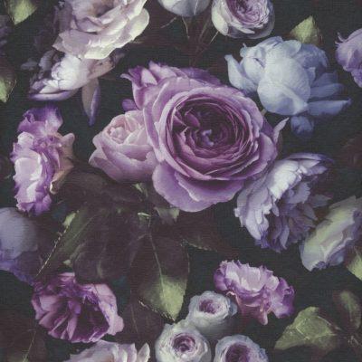 Tapet med store lilla rosenknopper