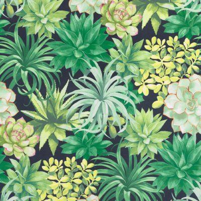 tapet fra casadeco botanica lækker kvalitet mørkegrøn bundfarve og lyse og mørkegrønne sukulenter og blade